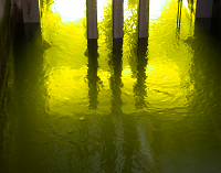 Water illuminated green by UV lamps