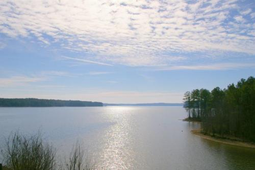 Picture of Jordan Lake